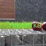 Gabionen-Ograda-od-pletene-žice-i-kamena.mp4_20161106_170911.046-150x150 Где используют нашу сетку